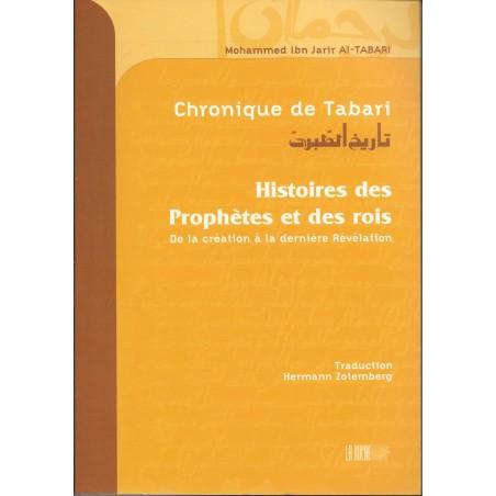 Chronique de Tabari- Histoires des envoyés de Dieu et des rois (choix de couverture)